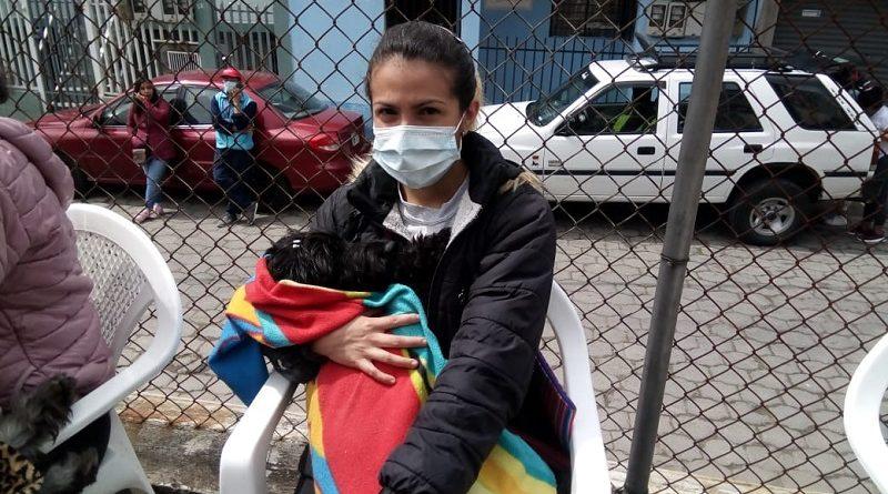 856 animales de compañía fueron esterilizados gratuitamente en zona Centro